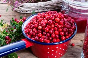 Tyttebær2